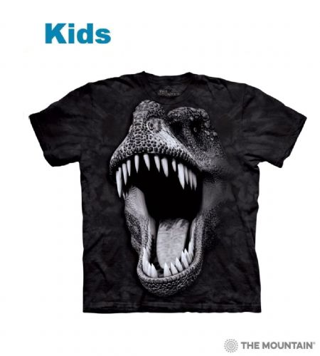 Big Face Glow Rex - Kids Dinosaur T-shirt - The Mountain®